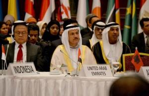UAE participates in COMCEC meetings in Istanbul