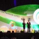 UAE Participates in COP16 Meeting