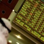 UAE Stocks Hit Multi-Year Highs