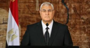 Egypt referendum on Draft Constitution on Jan 14-15