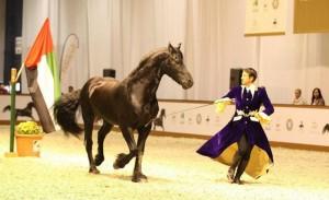 Dubai Int'l Arabian Horse Championship & Fair opens