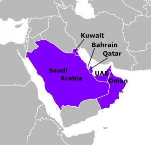Arab Gulf energy subsidies reach US$160b: GCC official