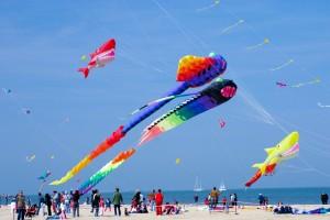 Kite Fest at Abu Dhabi's Bani Yas Island