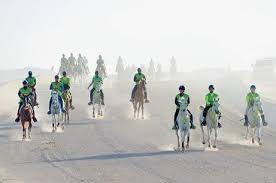 Abu Dhabi Endurance Festival concludes
