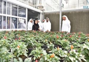 PM visits Dubai Municipality's plant nursery