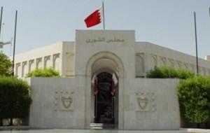 Shura voices pride in Bahrain's human rights strides