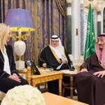 Saudi-Dutch cooperation discussed