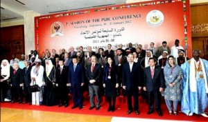 UAE becomes Member of PUIC Executive Committee