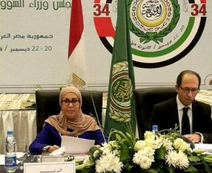 Council of Arab Ministers of Social Affairs meets