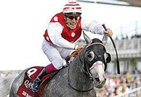 President's horse crowned champion