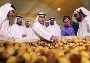 12th Liwa Dates Festival kicks off