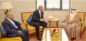 Bahraini-Czech cooperation discussed
