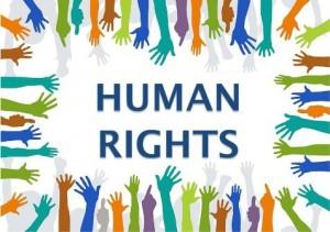 Gulf human rights organizations' efforts lauded
