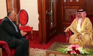 King hails Egypt's pivotal role