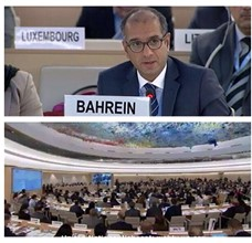 Bahrain stresses human right guaranteed by law