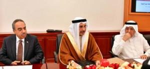 Deputy PM meets property developers, investors