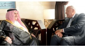 Foreign minister meets Egyptian counterpart