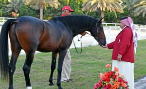 HM King Hamad receives gift from Queen Elizabeth II