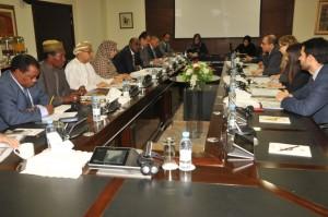 EU, OIC hold high-level meeting