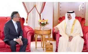 HM King receives Thai FM